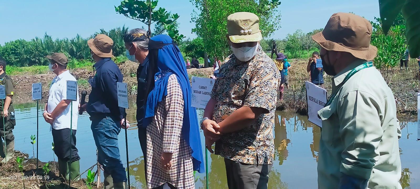 Kegiatan Penanaman Mangrove Kelurahan Nelayan Indah